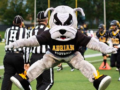 Ace the Adrian College Bull Dog